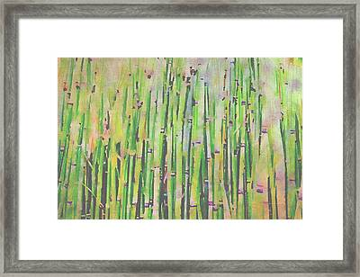 The Beauty Of A Bamboo Fence Framed Print by Angela A Stanton