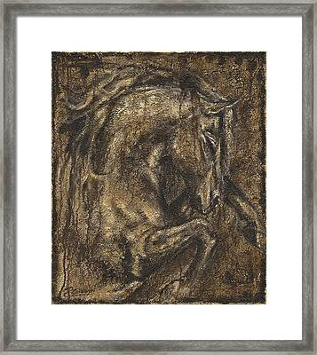 The Beauty Of A Horse Framed Print by Paula Collewijn -  The Art of Horses
