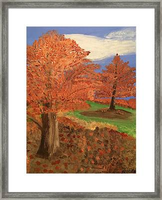 The Beauty Of Autumn  Framed Print