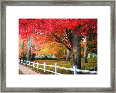 The Beauty Of Autumn In New England Framed Print