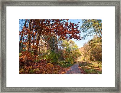 The Beauty Of Autumn Time Framed Print
