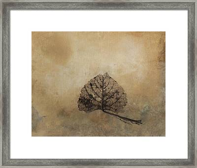 The Beauty Of Decay Framed Print