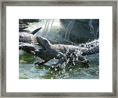 The Beauty Of Drops Framed Print