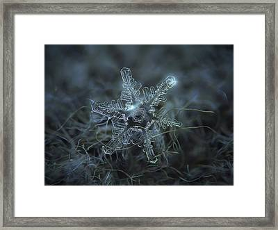 The Beauty Of Imperfection Framed Print by Alexey Kljatov