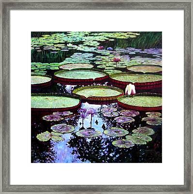 The Beauty Of Stillness Framed Print
