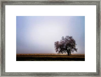 The Beauty Of The Land Framed Print