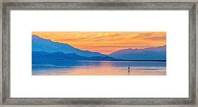 The Beauty Framed Print by Peter Tellone