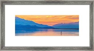The Beauty Framed Print