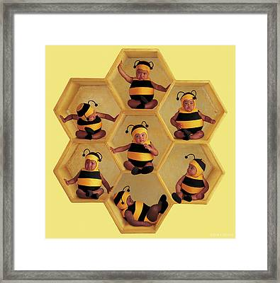 The Beehive Framed Print