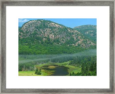 The Beehive Framed Print by Juergen Roth