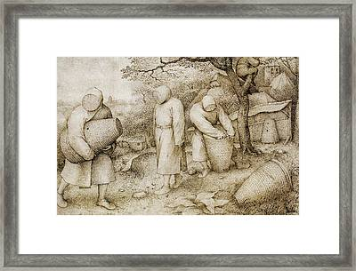 The Beekeepers And The Birdnester Framed Print