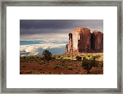 The Beer Stein Framed Print by Lana Trussell