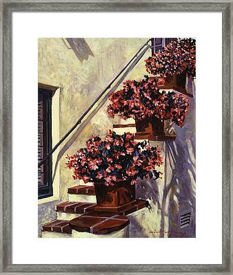 The Begonia Stairs Framed Print by David Lloyd Glover