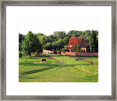 The Belgian Countryside Framed Print by David L Griffin