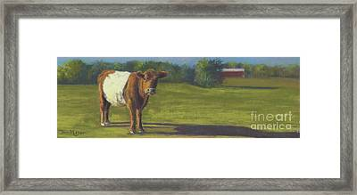 The Belted Cow Framed Print by Terri  Meyer