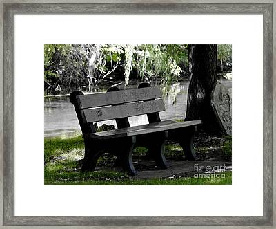 The Bench Framed Print