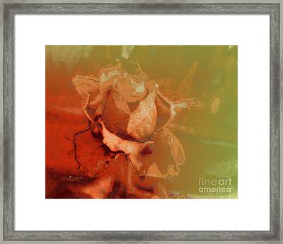 The Best Days Are Over Framed Print by Jutta Maria Pusl