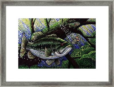The Big Bass Framed Print by Bob Crawford