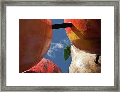 The Big Fruit Framed Print by Odille Esmonde-Morgan