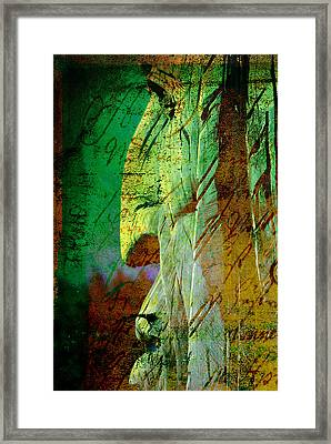 The Big Manitou Framed Print by Susanne Van Hulst