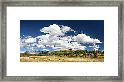 The Big Picture Framed Print by Cathy Neth