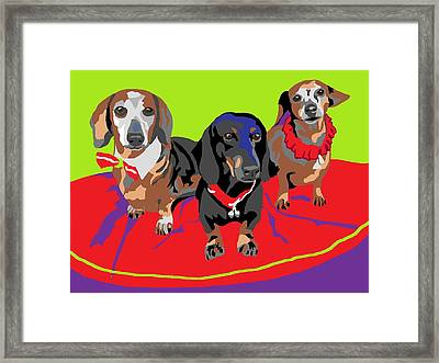 The Big Three Framed Print by Su Humphrey