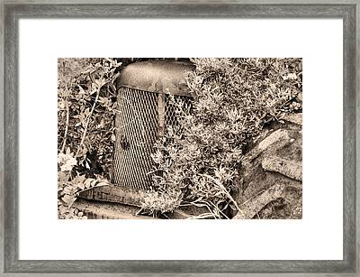The Bigfoot Sighting Bw Framed Print by JC Findley