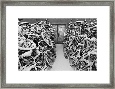 The Bike Shop Framed Print by Robert Lacy