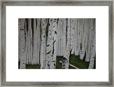 Framed Print featuring the painting The Birches.. by Betty-Anne McDonald