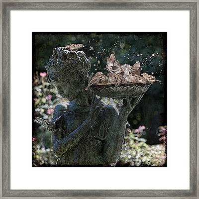 The Bird Bath Framed Print