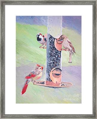 The Bird Feeder Framed Print by Stella Sherman