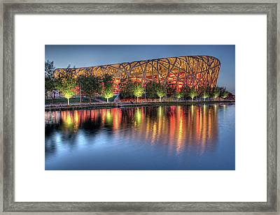 The Bird's Nest Framed Print