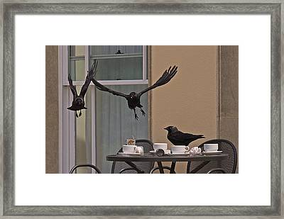 The Birds Framed Print by Rona Black