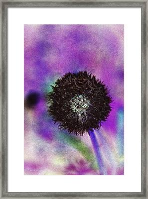 The Black Dandolion Framed Print by Lesa Fine