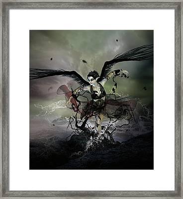 The Black Swan Framed Print by Mary Hood