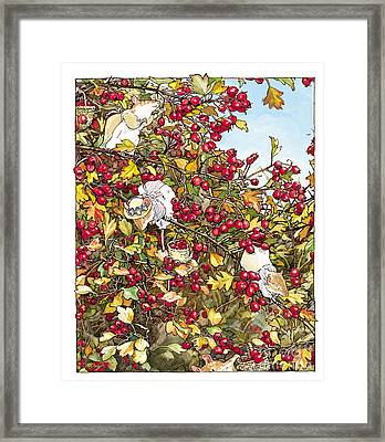The Blackthorn Bush Framed Print