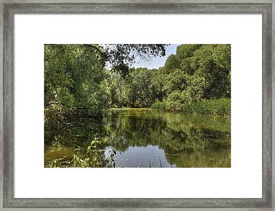 The Blessing Of Reflections Framed Print by Thomas Todd