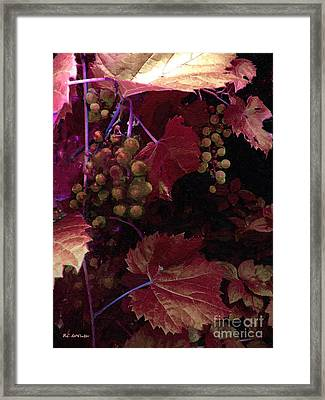 The Blood Of The Grape Framed Print by RC deWinter