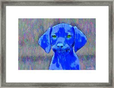 The Blue Dog - Pa Framed Print by Leonardo Digenio