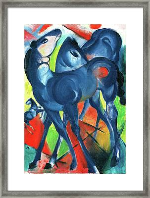 The Blue Foals Two Blue Foals On A Bright Background Framed Print by Charlotte Richardson