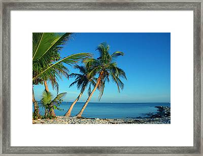 The Blue Lagoon Framed Print by Susanne Van Hulst