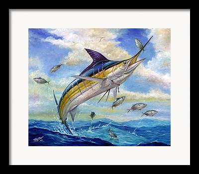 Marlin Paintings Framed Prints