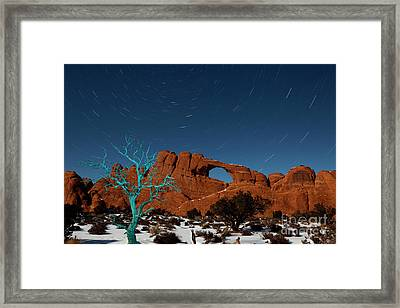 The Blue Tree Framed Print by Keith Kapple