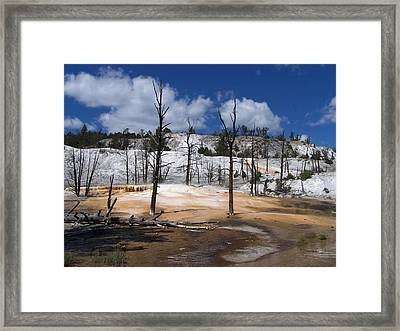 The Bluest Sky Framed Print by Debbie Hall