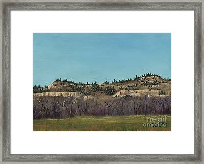 The Bluffs Framed Print