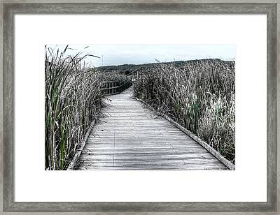 Framed Print featuring the photograph The Boardwalk by Michaela Preston