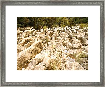 The Bones Of Barton Creek Framed Print by Chuck Taylor