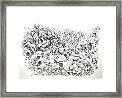 The Boneyard Of Unused Shapes Framed Print