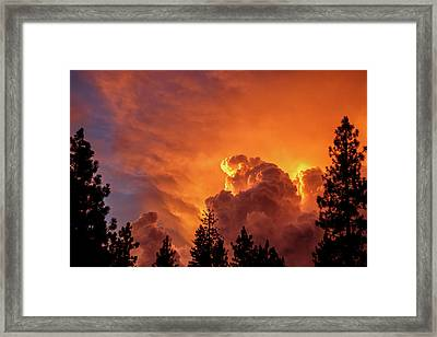 The Book Of Life Framed Print