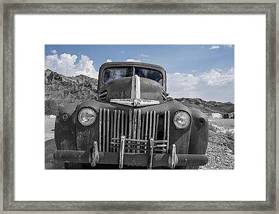 Framed Print featuring the photograph The Boss by Annette Berglund